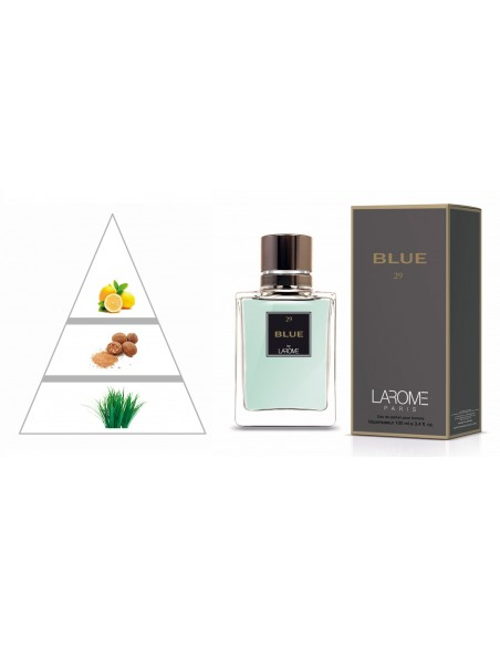 BLUE by LAROME (29M) Perfum Masculí- Piràmide olfactiva
