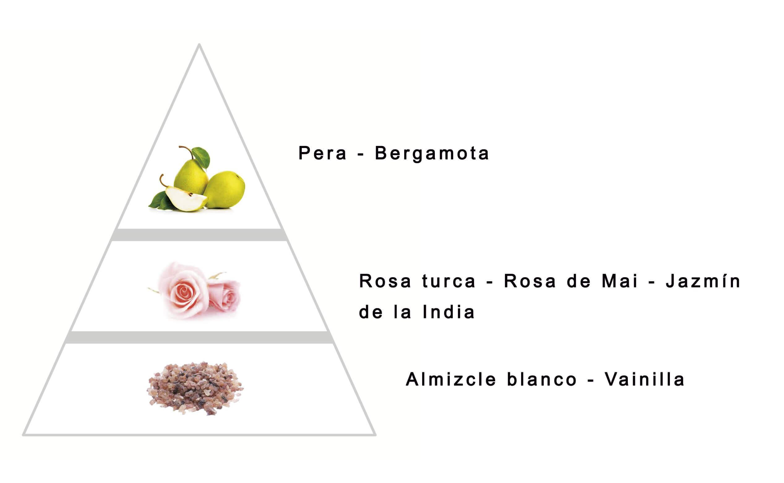 ISOLÉ by LAROME (12F) Perfume Femenino - Notas olfativas