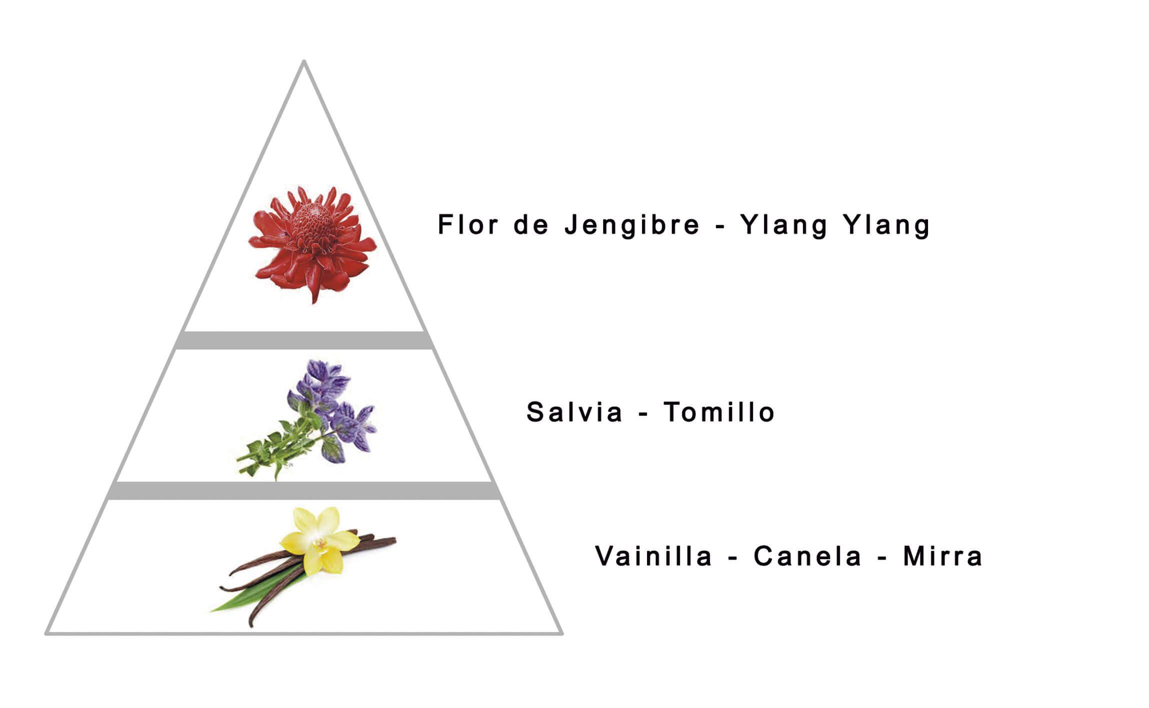 PURO EXTREMO FOR HER by LAROME (37F) Perfume Femenino - Notas olfativas