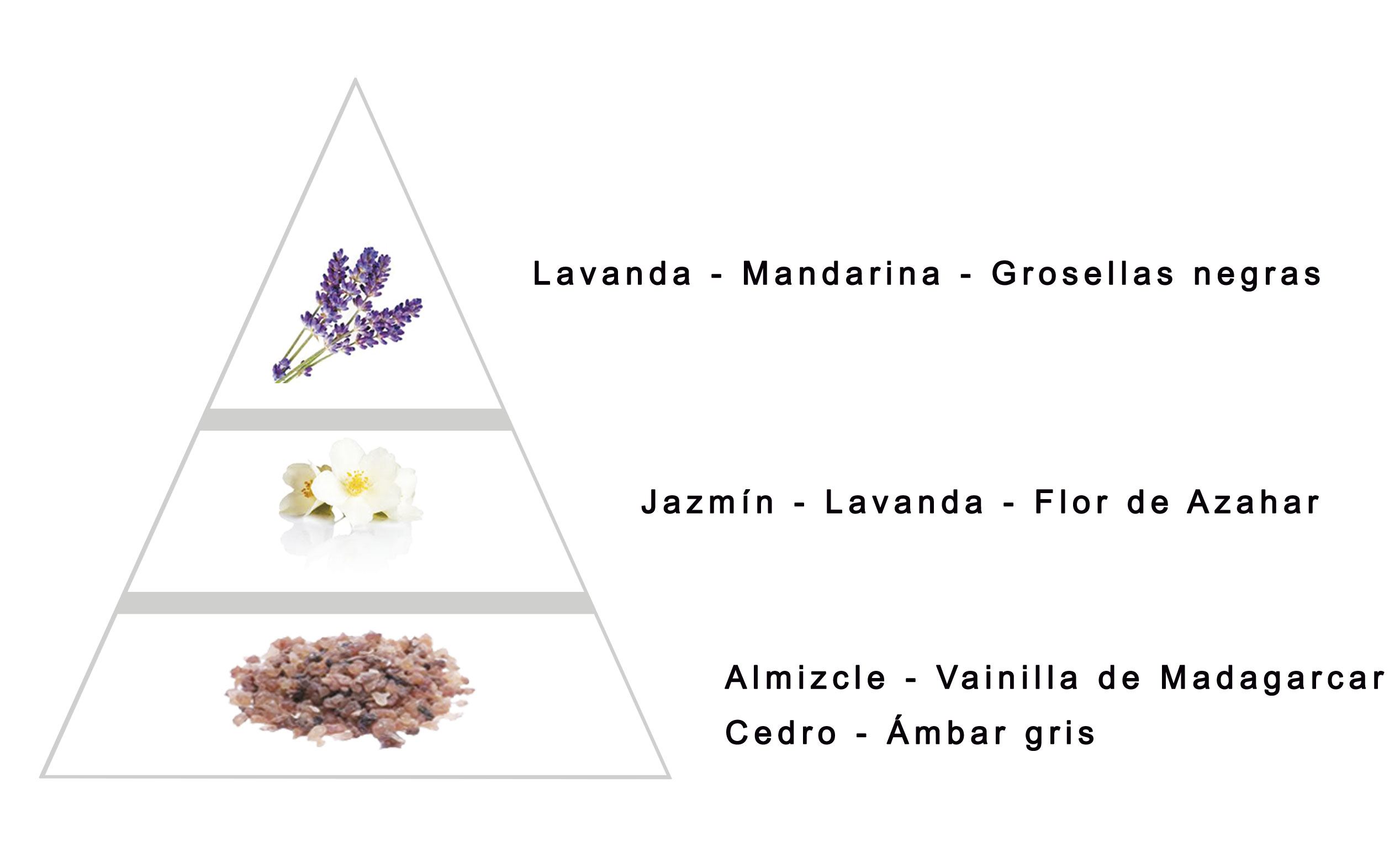 LIBERTY by LAROME (47F) Perfum Femení - Notes olfactives